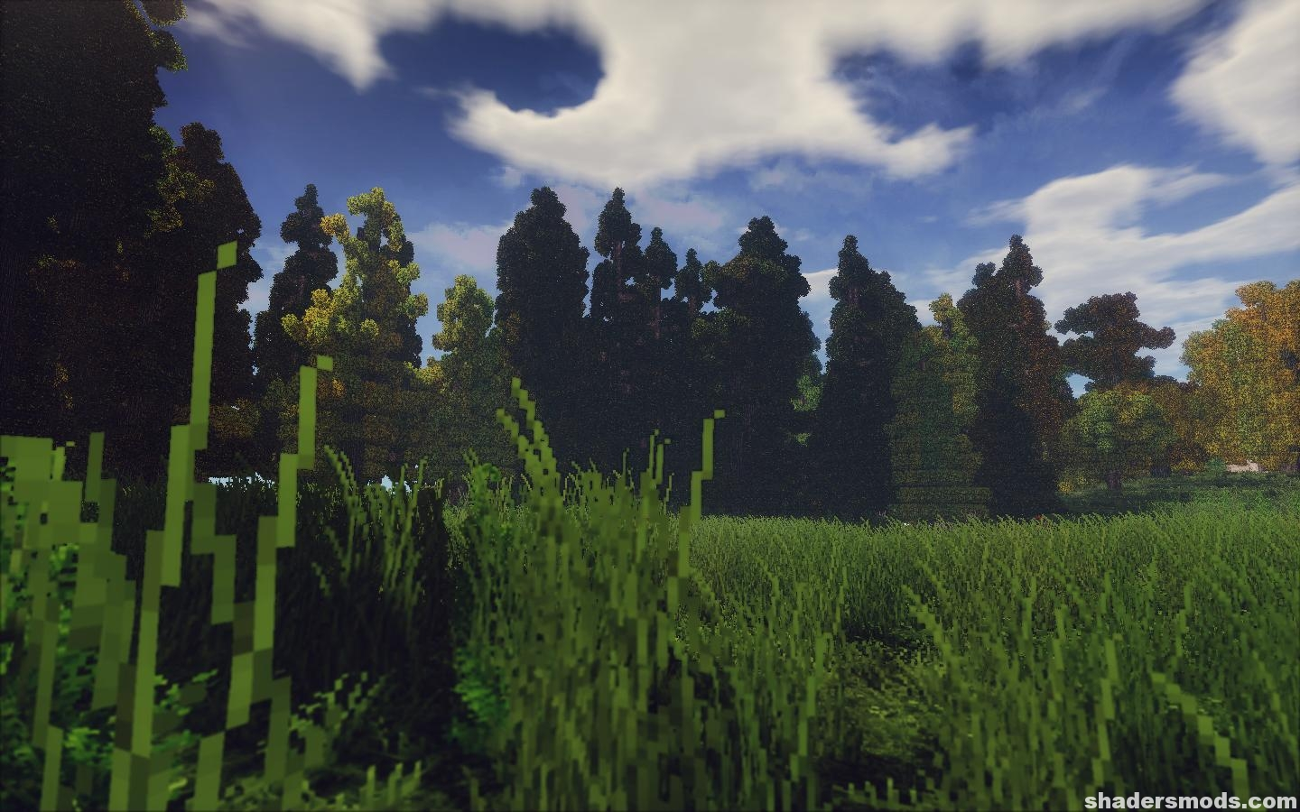 trilitons-shaders-4